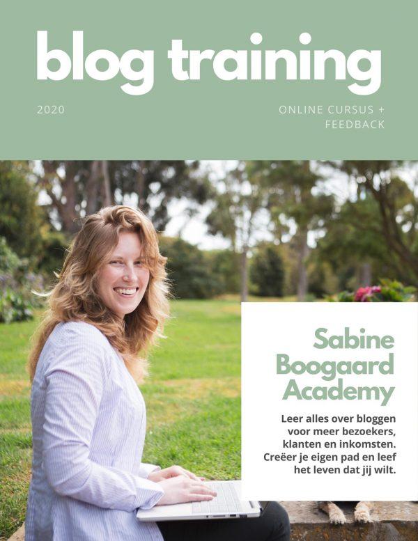 Online cursus bloggen met persoonlijke feedback
